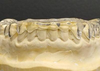 dentologia